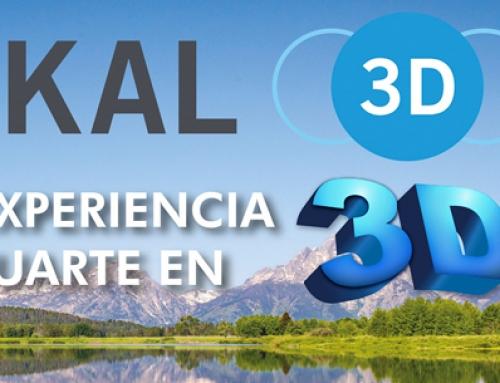 PASKAL 3D
